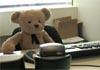 Нещасний ведмедик-менеджер іде на роботу