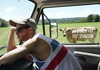 Стадо корів прорекламувало німецьку залізницю